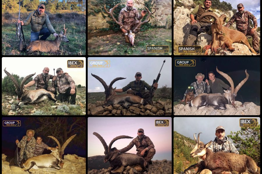 The hunting season 2018-2019 , Group Ibex Zone
